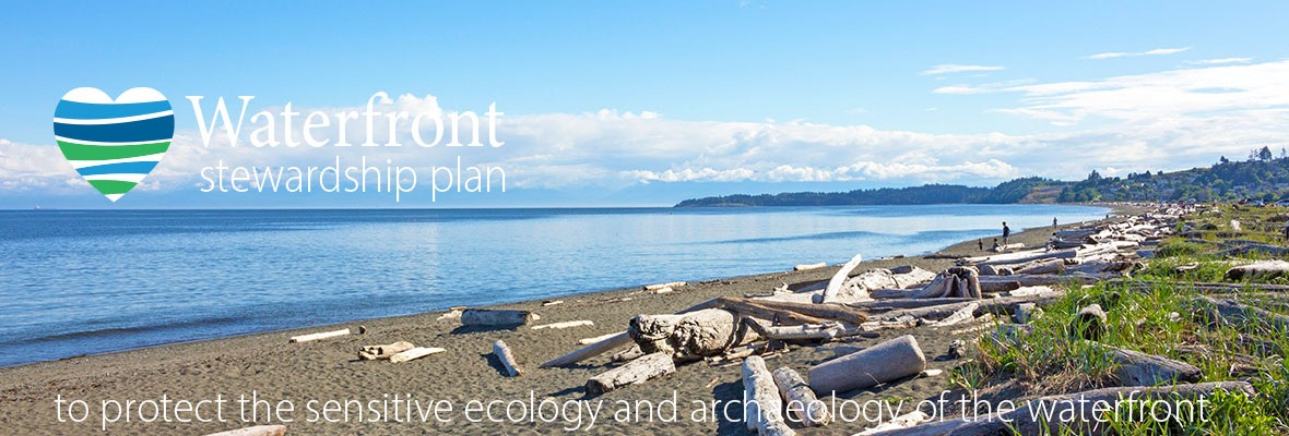image of the lagoon beach with text waterfront stewardship plan to protect the sensitive ecology and archaeology of the waterfront