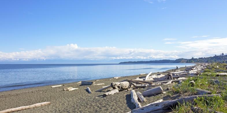 lagoon beach scene