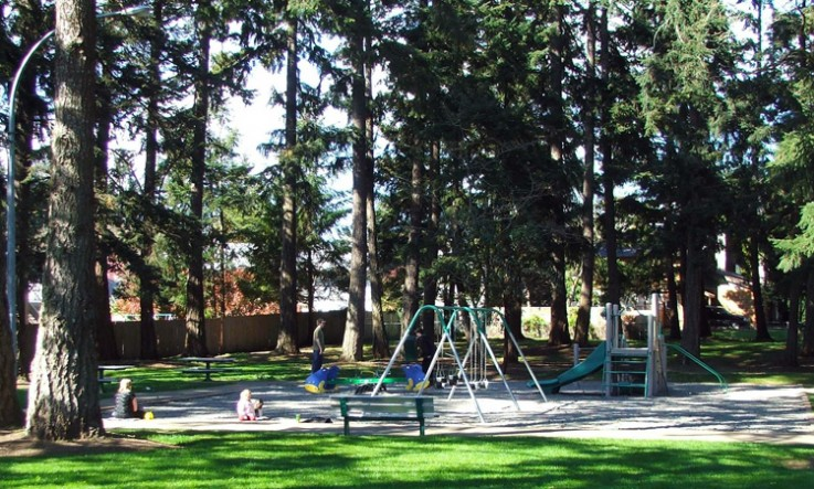 playground in the shade at Herm Williams Park