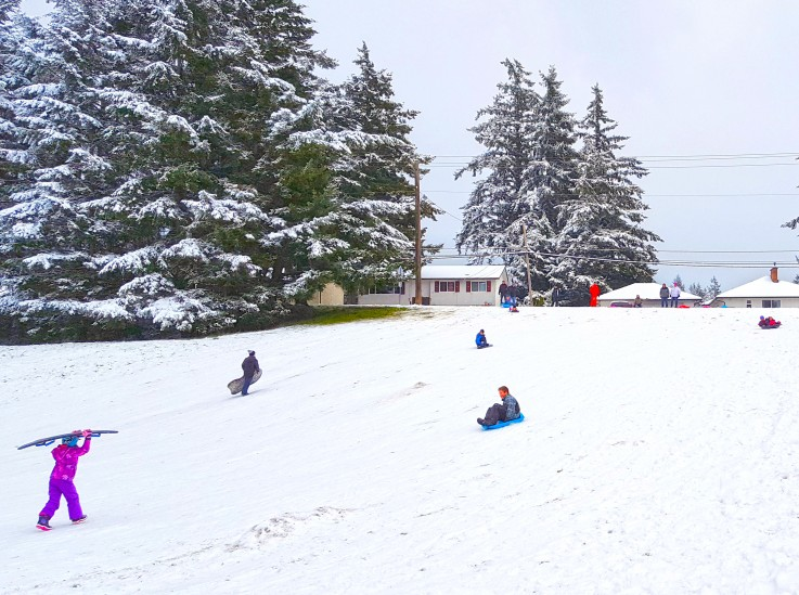 Families sledding at Colwood City Hall